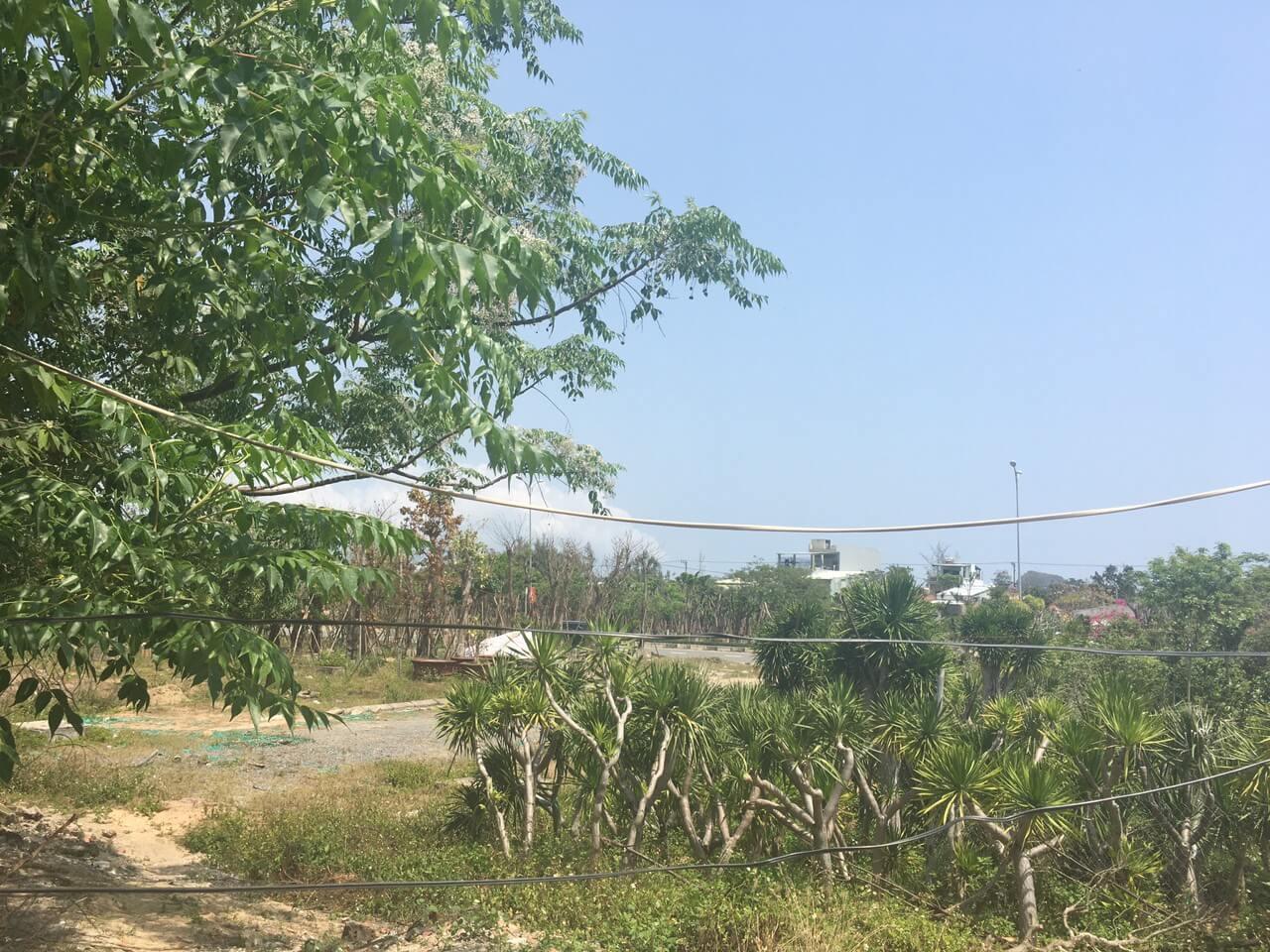 view xung quanh lô đất nền bán Nam Hòa Xuân