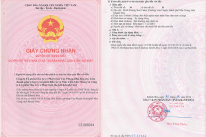 Quyền sử dụng đất - Trần Minh BDS